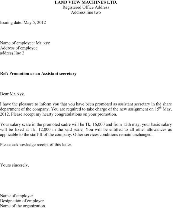 what does designation mean on a visa application